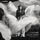 Quem Sabe Numa Tarde( feat.Abel Pintos)/Ana Carolina