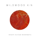 Beauty in Your Brokenness/Wildwood Kin