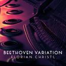 Beethoven Variation (After String Quartet No. 13, Op. 130: II)/Florian Christl