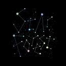Star Forest/シド