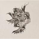 United Sparrows/FLOW