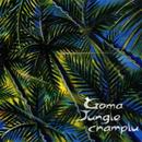 JUNGLE CHAMPLU/Goma