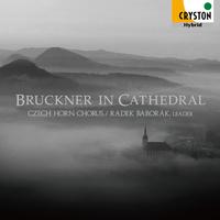ブルックナー・イン・カテドラル ― 天上の音楽 ―/ラデク・バボラーク/チェコ・ホルン・コーラス