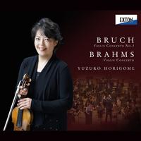 ブルッフ:ヴァイオリン協奏曲 第 1番 & ブラームス:ヴァイオリン協奏曲/Various Artists