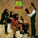 True Democracy/Steel Pulse