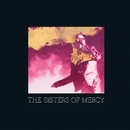 When You Don't See Me/The Sisters Of Mercy