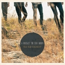 That Old Feeling EP/A Rocket To The Moon