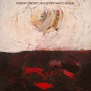 Upside Down Mountain/Conor Oberst
