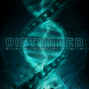 Evolution/Disturbed