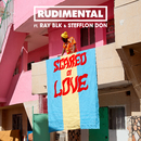 Scared of Love (feat. RAY BLK & Stefflon Don)/Rudimental