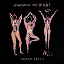 Wisdom Teeth/Jealous of the Birds