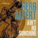 Ain't No Sunshine/Herb Alpert
