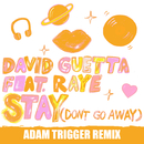 Stay (Don't Go Away) [feat. Raye] (Adam Trigger Remix)/David Guetta