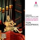 Organ Spectacular/Ton Koopman