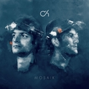 Mosaik/Camo & Krooked
