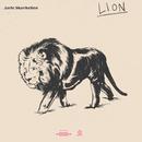 Lion/Jarle Skavhellen