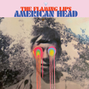 Dinosaurs on the Mountain/The Flaming Lips