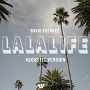 LaLaLife (Acoustic Version)/David Puentez