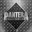 Reinventing The Steel - 20th Anniversary Deluxe Edition (Terry Date Mix)/Pantera