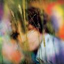 Light Rain Blues/Sam Amidon