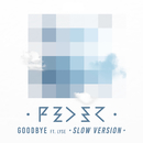 Goodbye (feat. Lyse) [Slow Version]/Feder