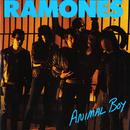 Animal Boy/Ramones