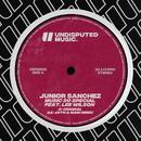 Music So Special (feat. Lee Wilson)/Junior Sanchez
