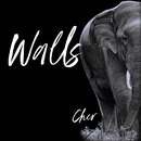Walls/Cher